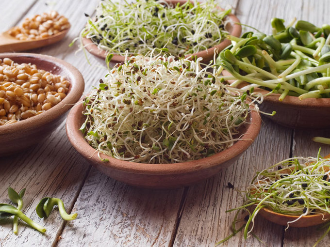 Neuer Food-Trend in Sicht? Keimlinge aus der Kokosnuss