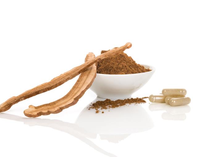 Nachhaltiges Superfood – Pilzpulver