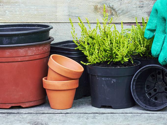 Pottburri – plastikfreier Pflanzentopf für den Massenmarkt
